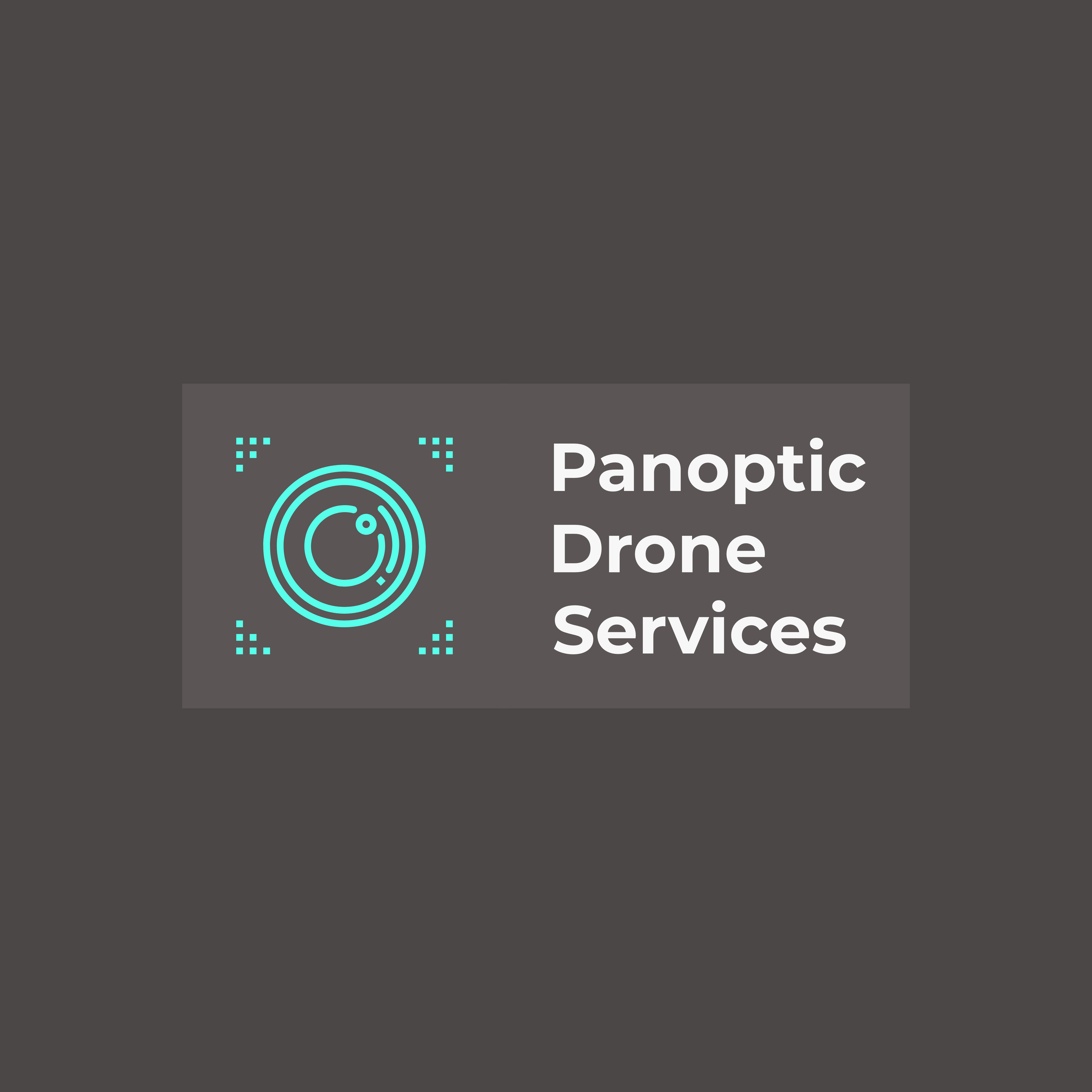 Panoptic Drone Services