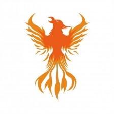 Phoenix Drone Media