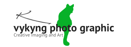 vykyng photo graphic