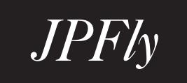 JPFly Ltd