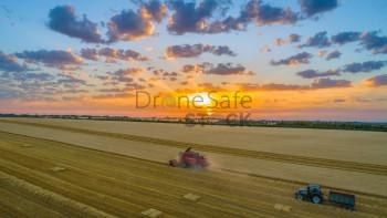 Summer Sunset Harvest