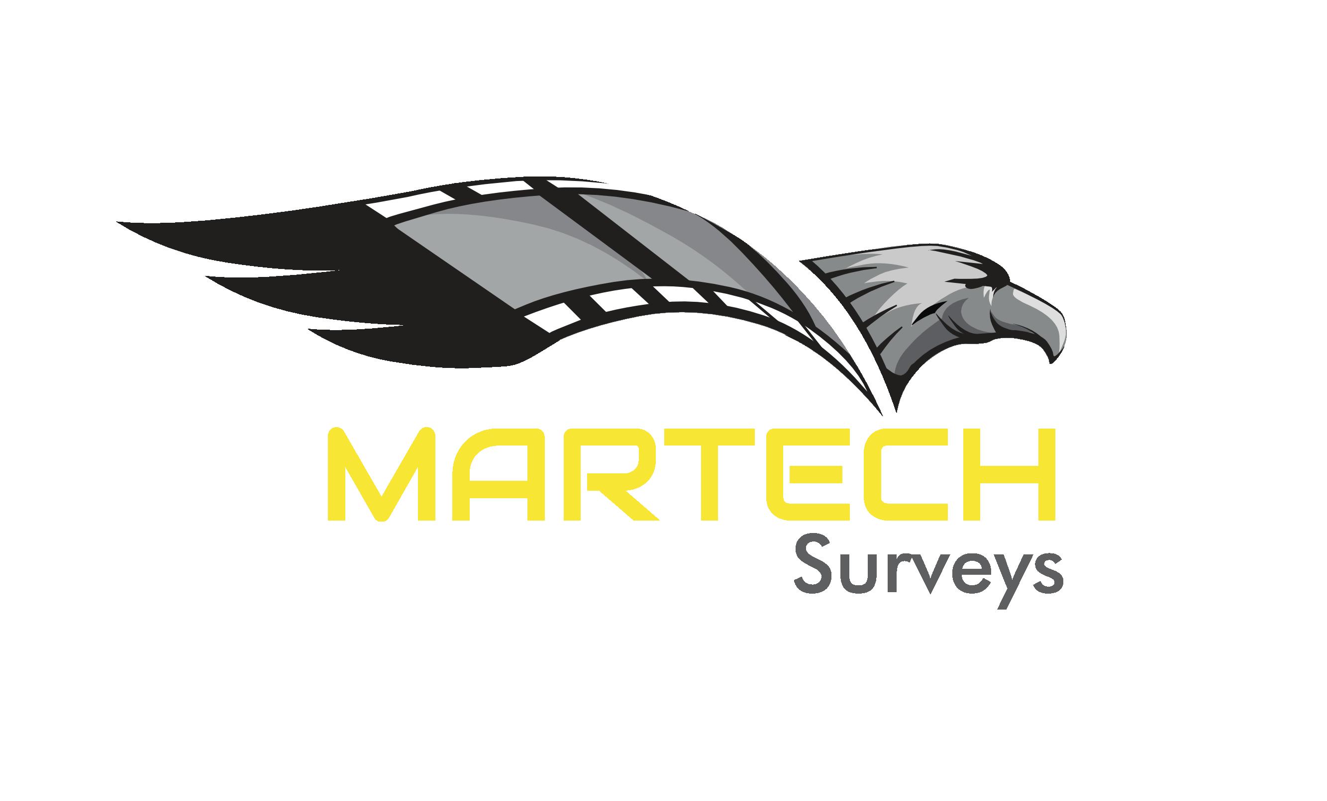 Martech Surveys