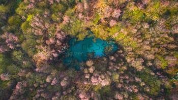 HIdden Pond from a birds eye view